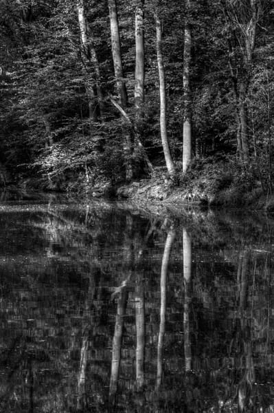 Fine Art Black and White Photographs of Great Falls Reflection by Michael Pucciarelli