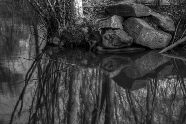A Fine Art Black And White Photograph of Lake Whetstone Reflection by Michael Pucciarelli