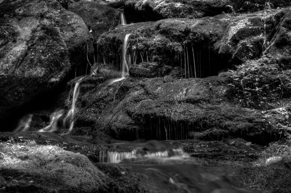 A Black and White Fine Art Photograph of Jones Runs Falls by Michael Pucciarelli