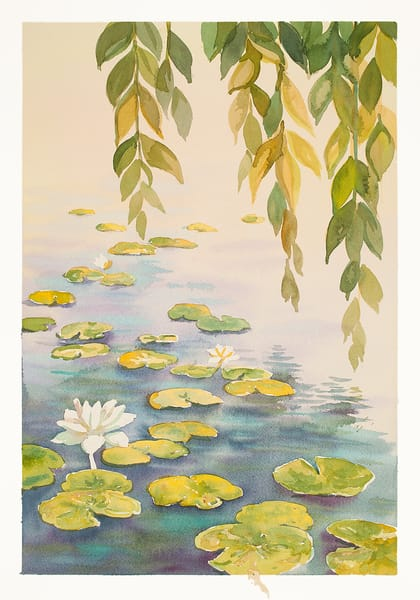 White Lotus | Zen Landscapes | Gordon Meggison IV