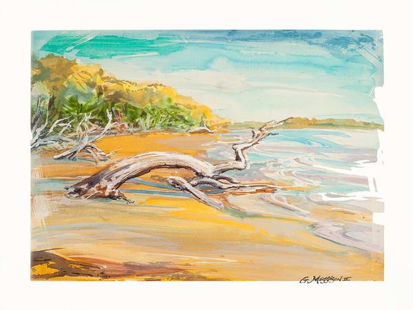 Talbot Fantasy   Watercolor Landscapes   Gordon Meggison IV