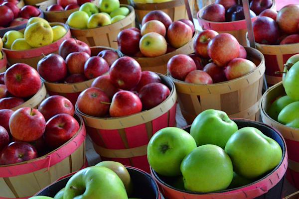 """""""Orchard Extravaganza"""""""