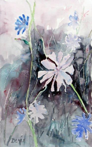 Chicory Art | David Beale