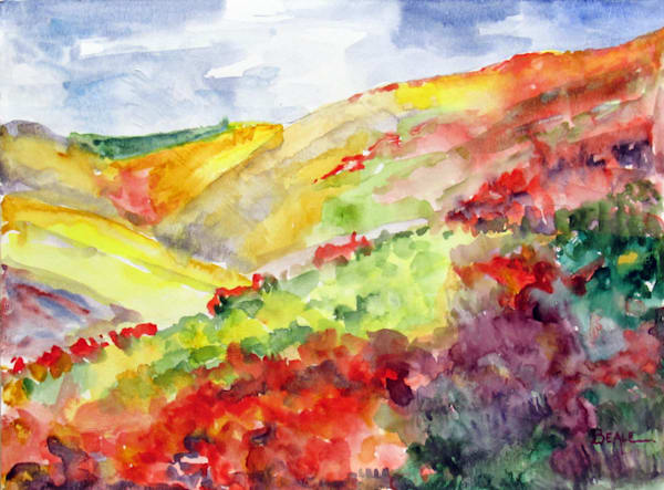 Autumn Hills In The Finger Lakes Art | David Beale