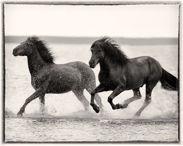 Beach Race Photography Art | HoofPrintsFineArt