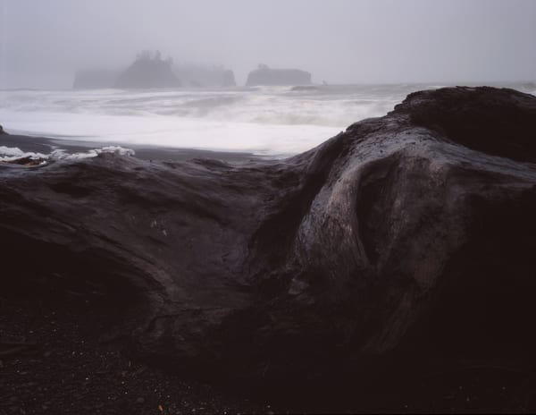WInter storm on the rugged Washington coast