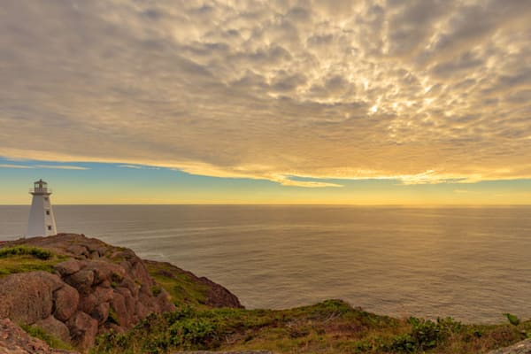 Cape Spear Morning