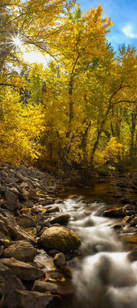 Markleville Fall Colors Photography Art | Brad Scott Visuals