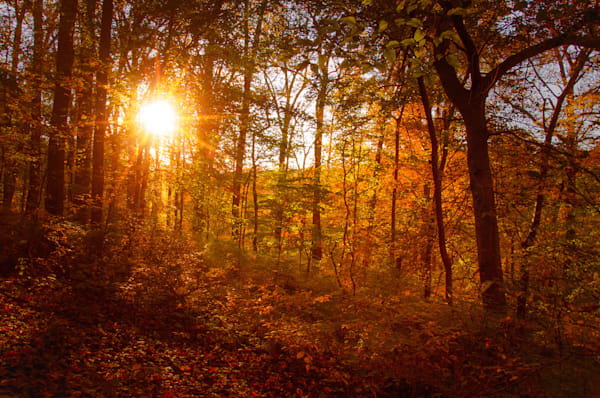Autumn Sunset Limited Edition Signed Fine Art Landscape Photograph by Melissa Fague