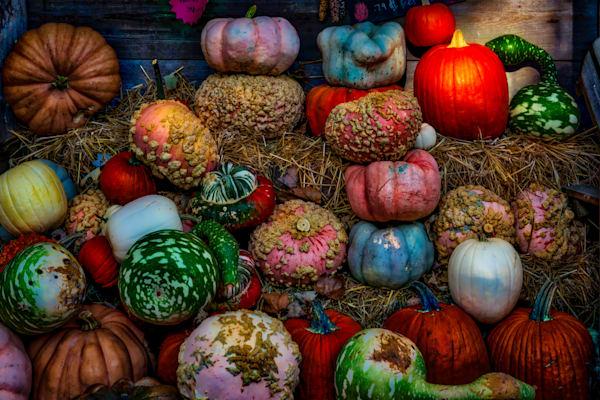 Melons Fine Art Photograph | JustBob Images