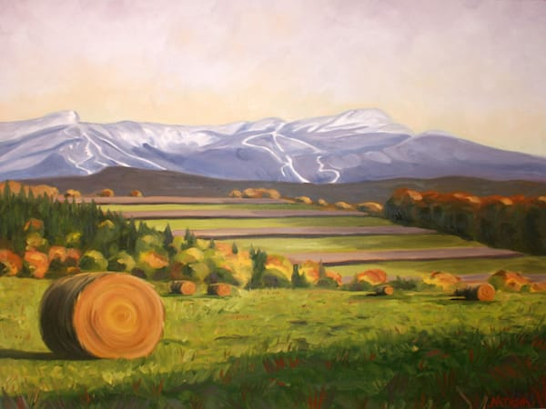 Vermont Harvest Art for Sale