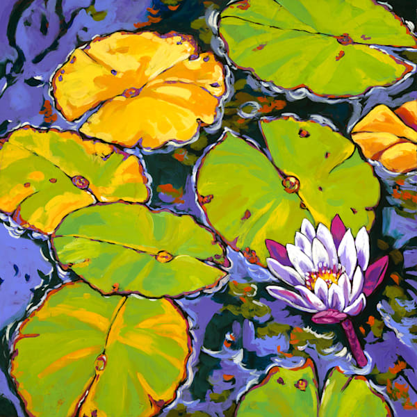 Lily Pads Dance In Light | Sally C. Evans Fine Art