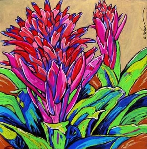 Two Pink Bromeliads Dance | Sally C. Evans Fine Art