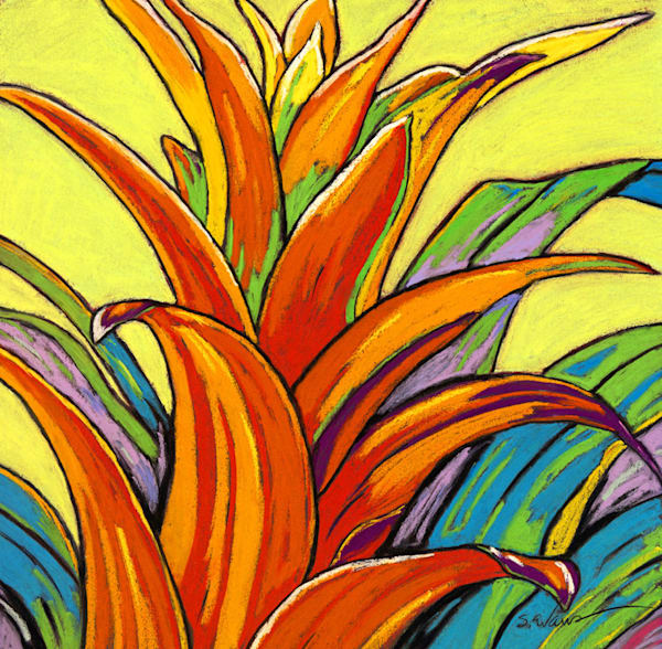 Orange Bromeliad | Sally C. Evans Fine Art