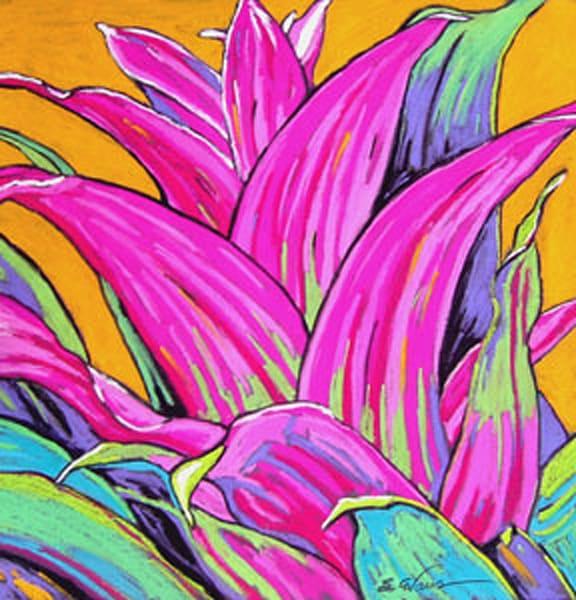 Pink Bromeliad