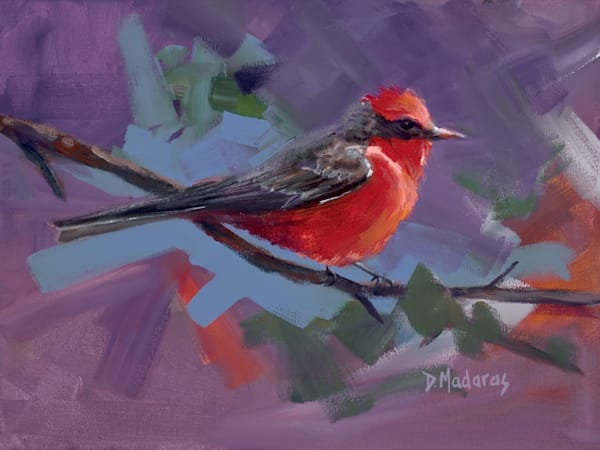 Vermillion Flycatcher | Southwest Art Gallery Tucson