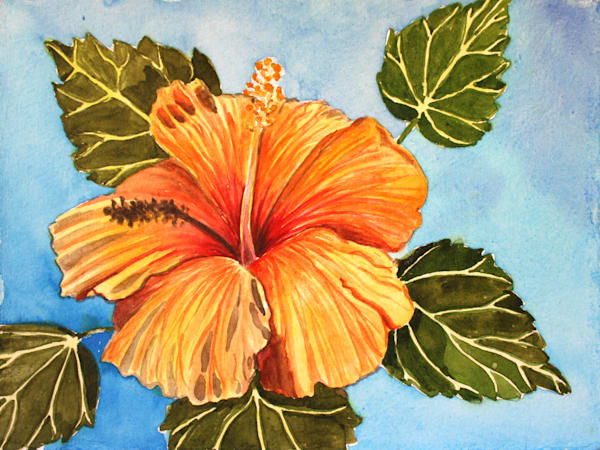 Orange Hibiscus Flower Art for Sale
