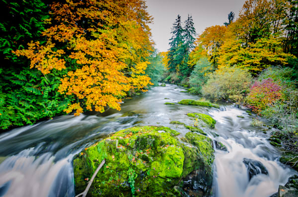 Lower Nisqually Falls colors
