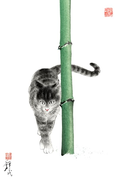 Cats 017 Photography Art | Cheng Yan Studio