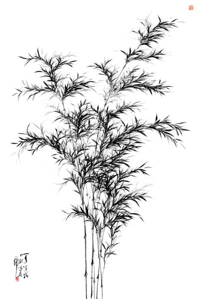 bamboo-002