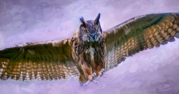 Great Horned Owl in Flight|Wall Decor fleblanc