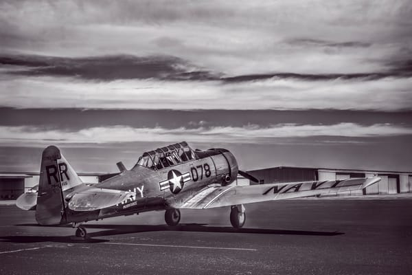 AT-6 Texan Trainer Monochrome Restored Military WW2 fleblanc