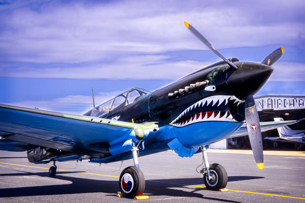 Flying Tigers Warhawk P-40 Restored Navy Aircraft fleblanc