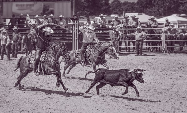 Rodeo Team Roping Roundup Competition|Wall Decor fleblanc