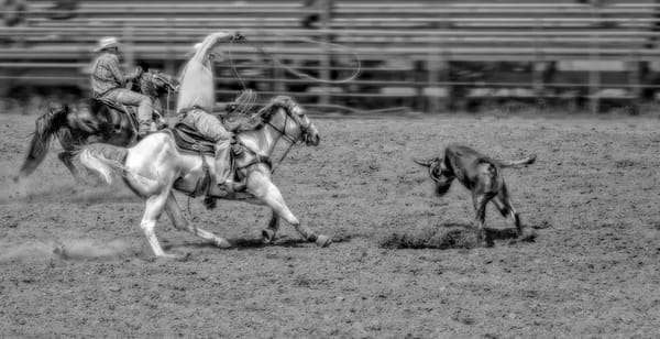 Rodeo Team Cowboys Roping Steer Decor|Wall Decor fleblanc