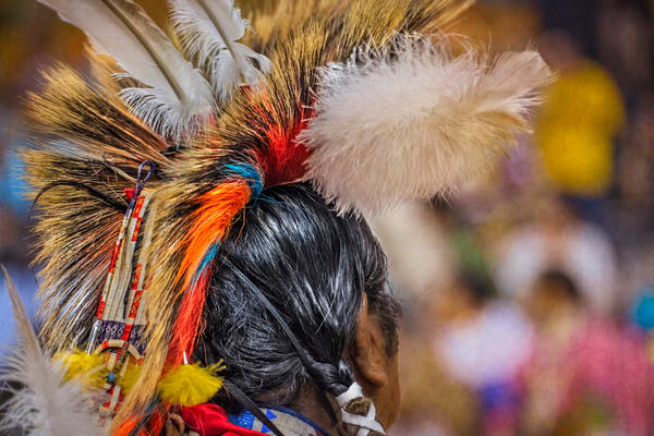 Native American Headdress Pow Wow|Wall Decor fleblanc