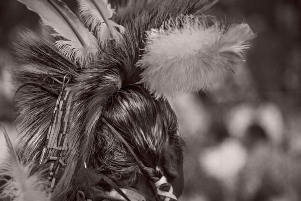 Native American Vintage Headdress Decor|Wall Decor fleblanc