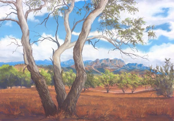 Flinders Elder Range by Jenny Greentree