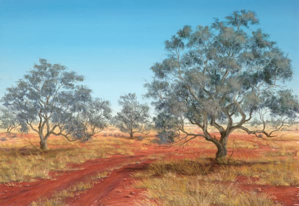 Coolibah Country by Jenny Greentree