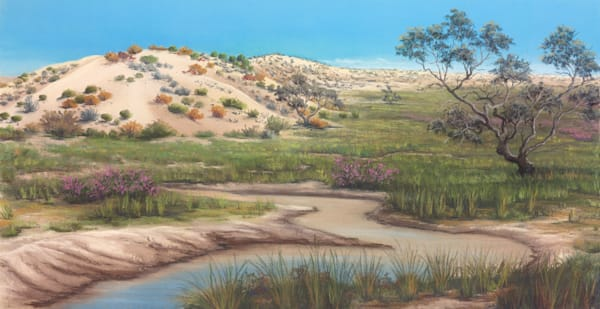 Flora Between The Dunes by Jenny Greentree