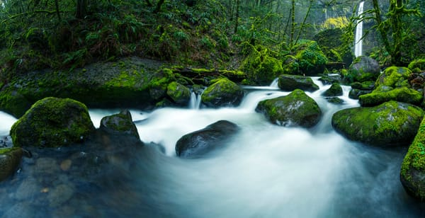 Bring me to life, Oregon waterfall print by Brad Scott