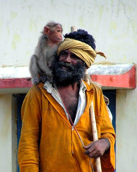 Evolution or Intelligent Design?--India