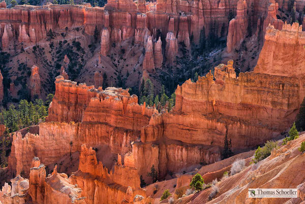 The grandeur of Bryce Canyon/Stunning Queens Garden overlook fine art prints