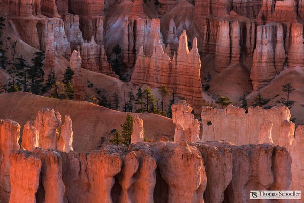 Mesmerizing formations of Bryce Canyon/Fine art prints for home decor by Thom Schoeller