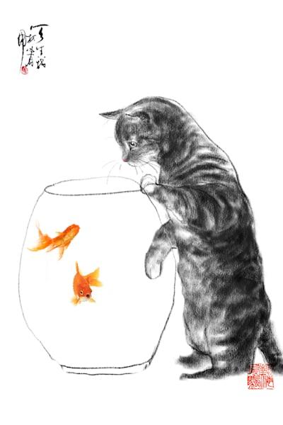 cats-046