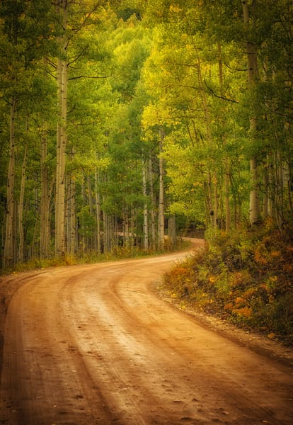Vertical Photo Colorful Aspen Trees Winding Country Road Crested Butte Colorado