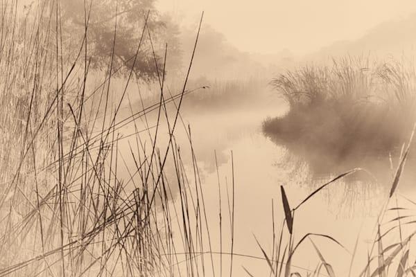 Morning Mist on Grindstone Creek - monochrome