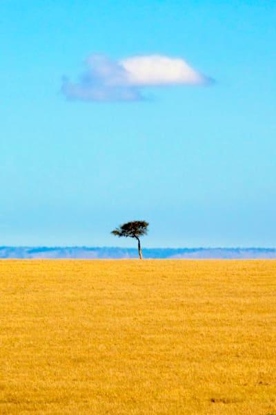 Plains And Grasslands 002 Photography Art | Cheng Yan Studio