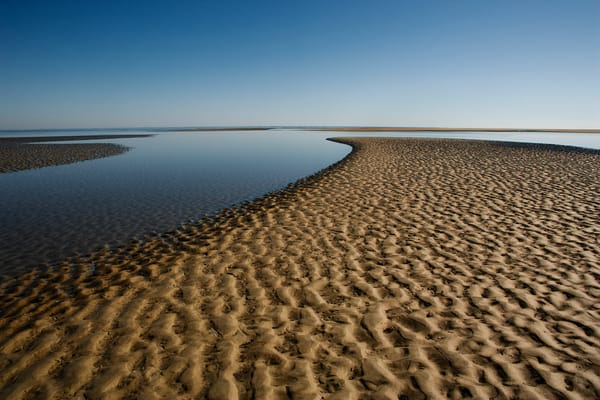 blue sky low tide 2 beach art print