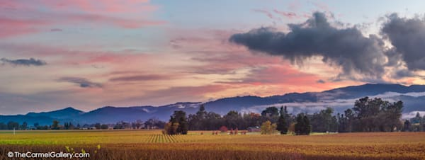 Sunset Panorama, Napa Valley