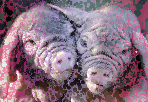 Pig art, Framed Art, Posters, Canvas and Prints at VectorArtLabs.com
