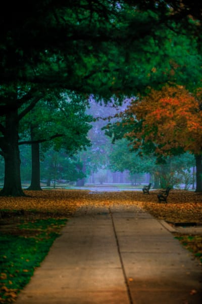 path-into-autumn
