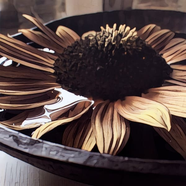 Kitchen Counter Flower Art Photograph sunflower