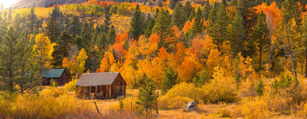 Fall Cabin, Hope Valley fall colors photo print