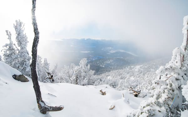 Baby It's Cold Outside, Heavenly Lake Tahoe Photo print
