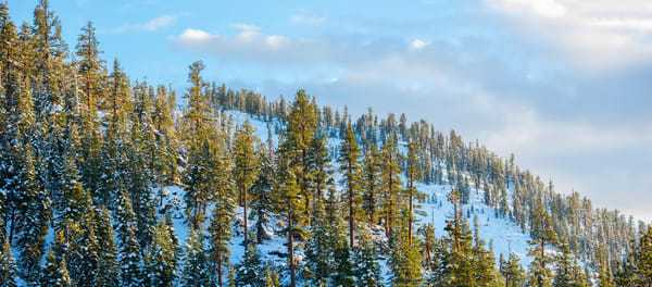 The Face of Heavenly, Heavenly Ski Resort Lake Tahoe Photo Print